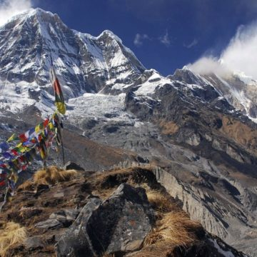 Annapurna – The honoured Shakambari
