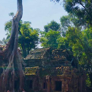 The Golden Era of Indic Civilisation – Angkor (Part 4)