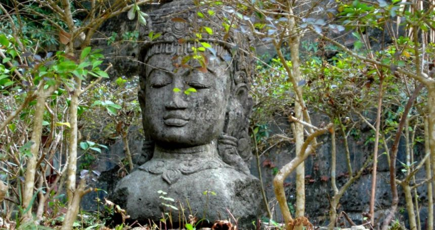 Buddha, Caste and Environment