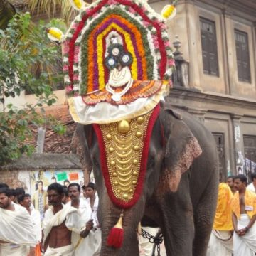 The Eternal Dasas of Sree Padmanabha Swamy – II (A Glimpse into Ancient Times)
